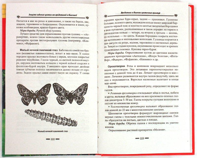 Иллюстрация 1 из 6 для Защита садовых цветов от вредителей и болезней - Елена Дудченко | Лабиринт - книги. Источник: Лабиринт
