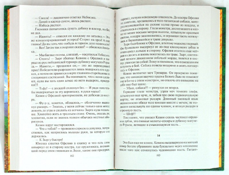 Иллюстрация 1 из 11 для Паладин. Странствующий рыцарь - Шелонин, Баженов | Лабиринт - книги. Источник: Лабиринт