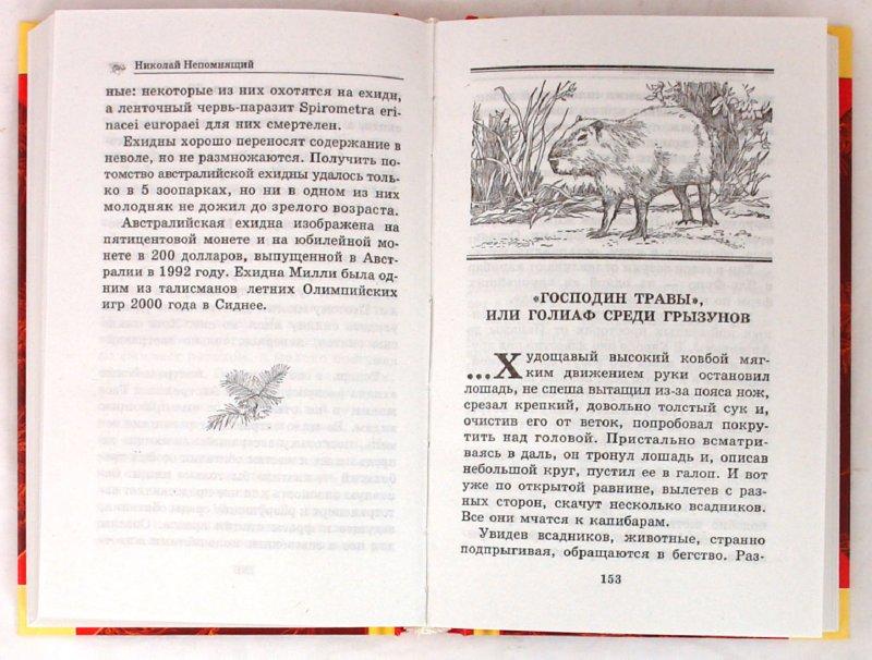 Иллюстрация 1 из 5 для Тайны удивительных животных - Николай Непомнящий   Лабиринт - книги. Источник: Лабиринт