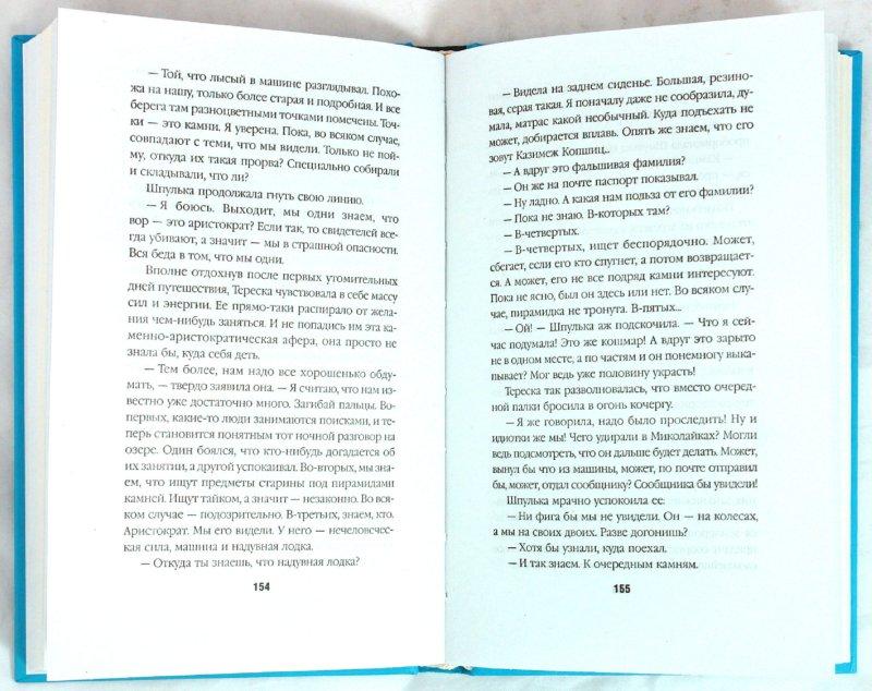 Иллюстрация 1 из 17 для Большой кусок мира - Иоанна Хмелевская   Лабиринт - книги. Источник: Лабиринт