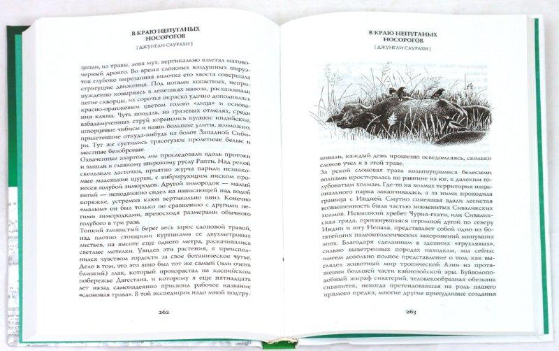 Иллюстрация 1 из 22 для В краю непуганых носорогов - Евгений Коблик | Лабиринт - книги. Источник: Лабиринт