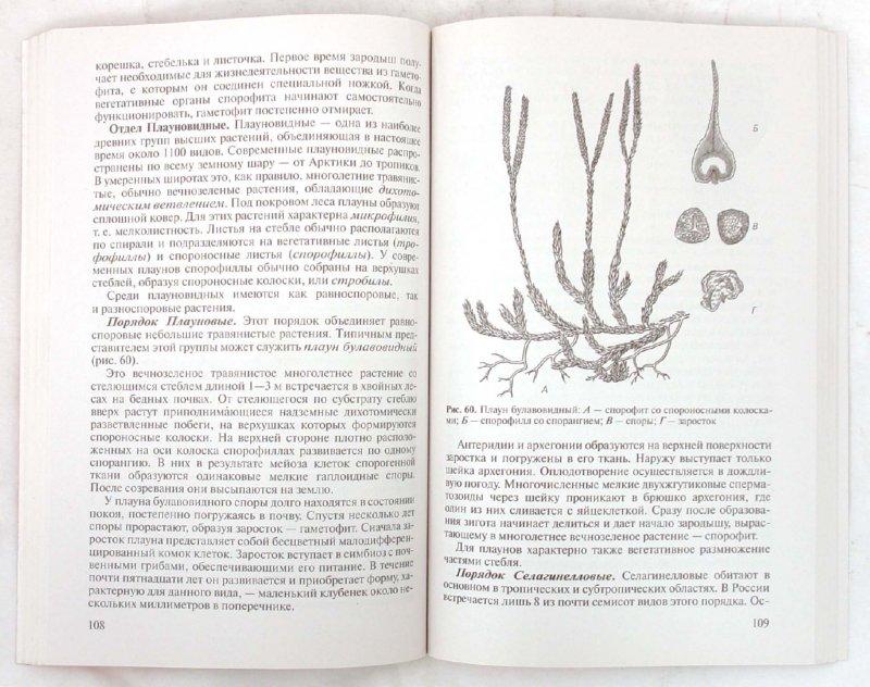 Иллюстрация 1 из 14 для Биология растений, грибов, лишайников. 10-11 классы - Агафонова, Сивоглазов | Лабиринт - книги. Источник: Лабиринт