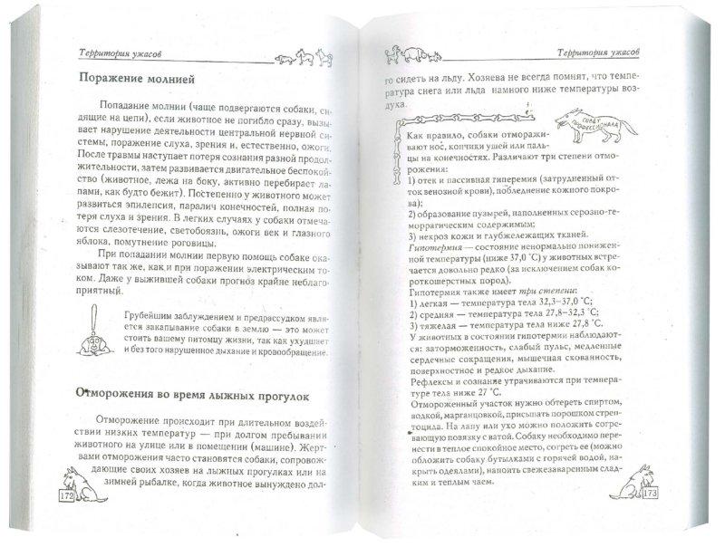 Иллюстрация 1 из 7 для Как воспитать собаку, удобную для жизни - Ольга Зайцева   Лабиринт - книги. Источник: Лабиринт