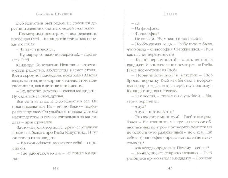 Иллюстрация 1 из 6 для Генерал Малафейкин - Василий Шукшин | Лабиринт - книги. Источник: Лабиринт