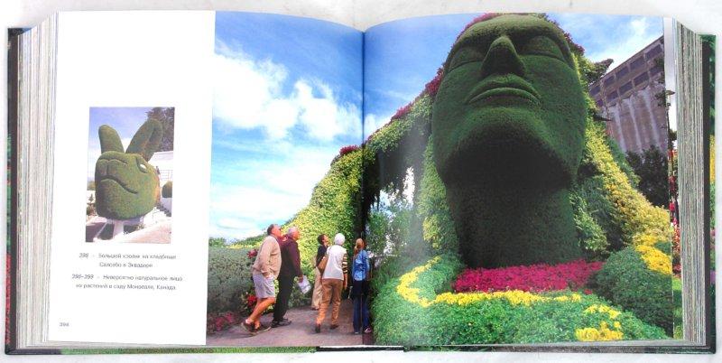 Иллюстрация 1 из 16 для Сады. Самые лучшие фотографии - Гвайта Овидио | Лабиринт - книги. Источник: Лабиринт