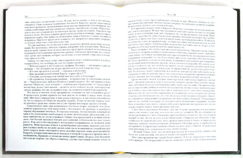 Иллюстрация 1 из 16 для Фридрих Шиллер. Духовидец. Карл Гроссе. Гений. Генрих Цшокке. Абеллино, великий разбойник - Шиллер, Гроссе, Цшокке | Лабиринт - книги. Источник: Лабиринт