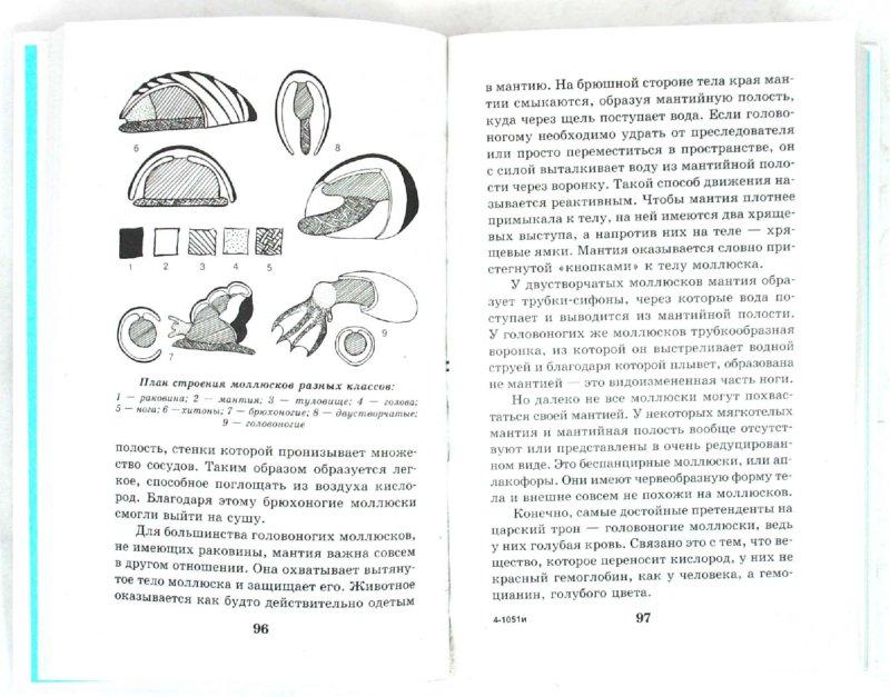 Анатомия 4