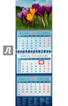 Календарь 2010 Весенний пейзаж с крокусами (14949)