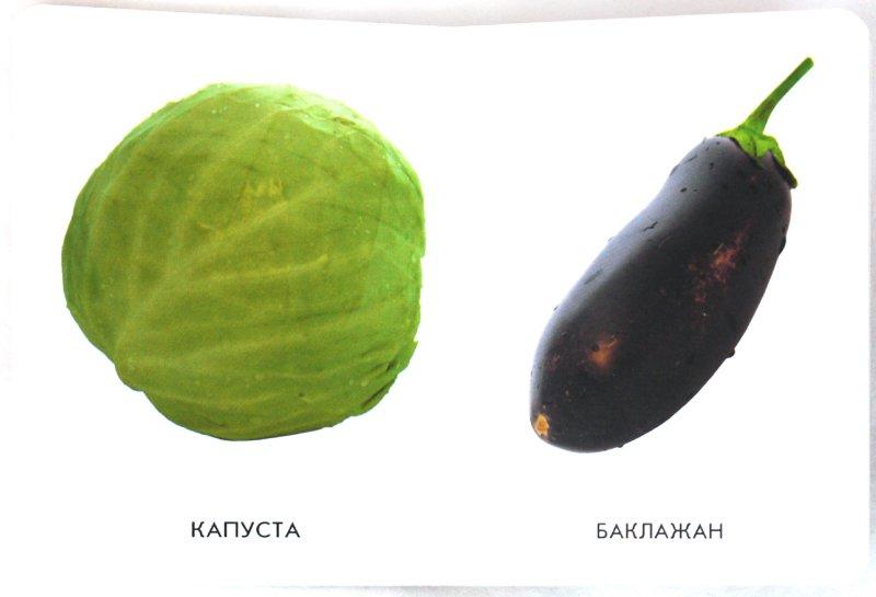 Иллюстрация 1 из 16 для 22 картинки: Овощи, фрукты   Лабиринт - книги. Источник: Лабиринт