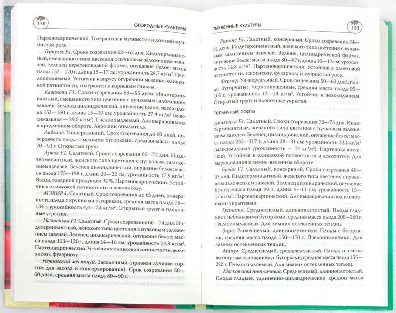 Иллюстрация 1 из 16 для Огородные культуры - Мария Цветкова | Лабиринт - книги. Источник: Лабиринт