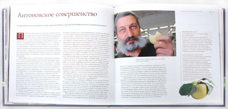 Иллюстрация 1 из 19 для Полная чаша - Сергей Цигаль | Лабиринт - книги. Источник: Лабиринт