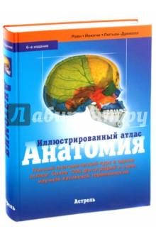 Иллюстрированный атлас. АнатомияАнатомия и физиология<br>Полный анатомический курс в одном атласе: <br>- уникальные фотографии анатомических срезов, тончайшим образом передающие цветовые и структурные особенности строения органов; <br>- обучающие схемы, которые дополняют и разъясняют великолепные цветные фотографии анатомических срезов; <br>- дидактический материал, освещающий фундаментальные аспекты строения органов и систем; <br>- разъяснение функциональных связей между отдельными органами и их системами; <br>- принцип изучения срезов от внешнего к внутреннему, при препарировании в лаборатории и в клинической работе; <br>- описание современных методов визуализации особенностей строения органов и систем организма; <br>- удобный всесторонний предметный указатель; <br>- таблицы нервной и мышечной систем.<br>6-е издание.<br>
