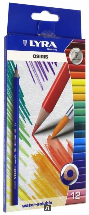 """Иллюстрация 1 из 9 для Карандаши акварельные """"Osiris"""" (12 цветов) (2531120)   Лабиринт - канцтовы. Источник: Лабиринт"""
