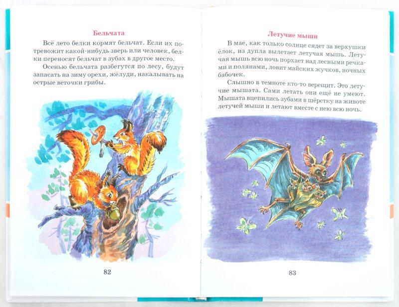 Иллюстрация 1 из 11 для Про зверей больших и маленьких. Рассказы и сказки о зверях и птицах - Сладков, Бианки, Снегирев | Лабиринт - книги. Источник: Лабиринт