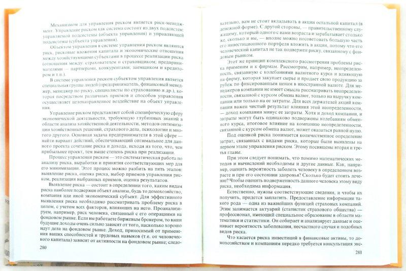 Иллюстрация 1 из 9 для Экономические и финансовые риски. Оценка, управление, портфель инвестиций - Шапкин, Шапкин | Лабиринт - книги. Источник: Лабиринт