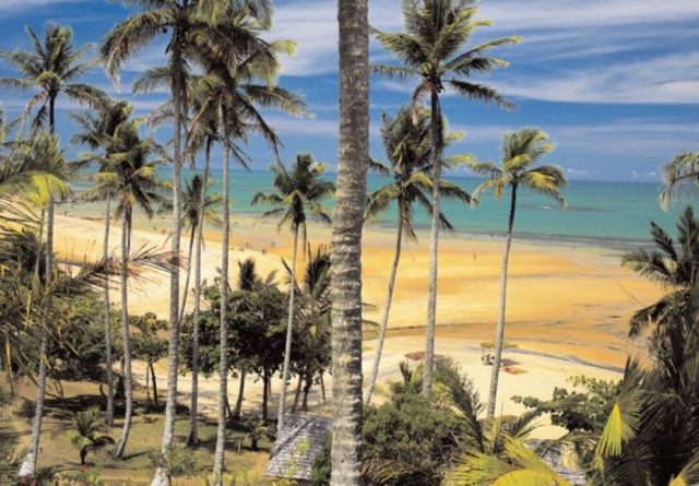 ����������� 1 �� 6 ��� Style Bahia   �������� - �����. ��������: ��������