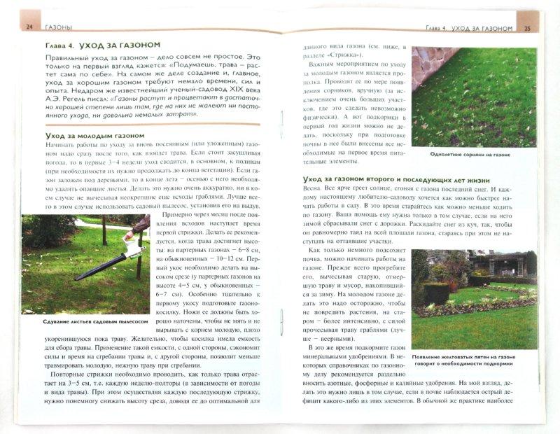 Иллюстрация 1 из 21 для Газоны. Элементы садового дизайна - Елена Колесникова   Лабиринт - книги. Источник: Лабиринт