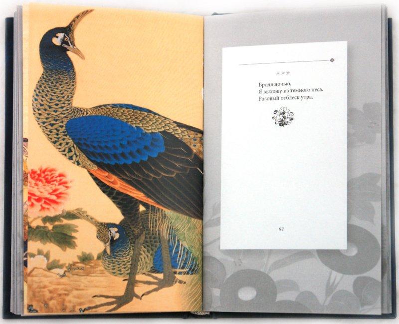 Иллюстрация 1 из 43 для Мацуо Басе и поэты его школы. Избранные хайку | Лабиринт - книги. Источник: Лабиринт