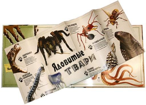 Иллюстрация 1 из 5 для Животные. Сюрпризы природы - Стив Паркер | Лабиринт - книги. Источник: Лабиринт