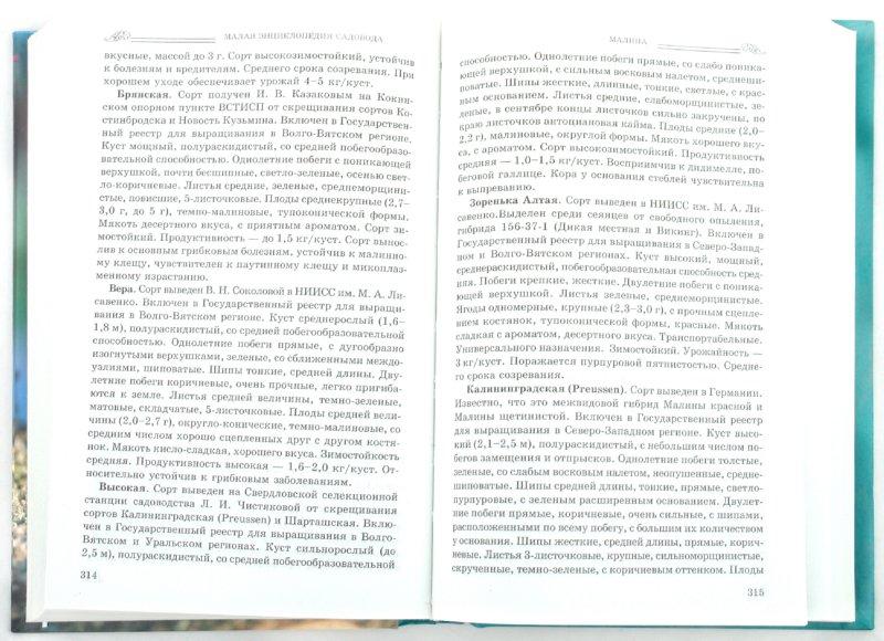 Иллюстрация 1 из 6 для Малая энциклопедия садовода | Лабиринт - книги. Источник: Лабиринт