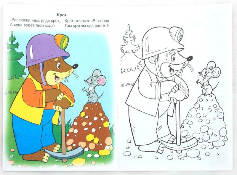Иллюстрация 1 из 17 для Лесные новости - Т. Коваль | Лабиринт - книги. Источник: Лабиринт