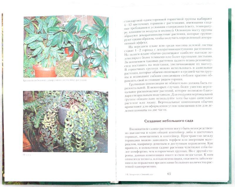 Иллюстрация 1 из 30 для Зимний сад в квартире, доме, офисе - Виктория Захарченко | Лабиринт - книги. Источник: Лабиринт