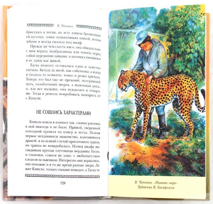 Иллюстрация 1 из 31 для Догадливый лев, Раджи и другие... - Дуров, Чаплина, Гагенбек | Лабиринт - книги. Источник: Лабиринт