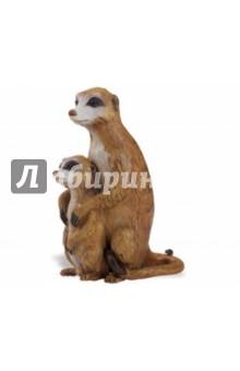 Сурикат с детенышем (267029)