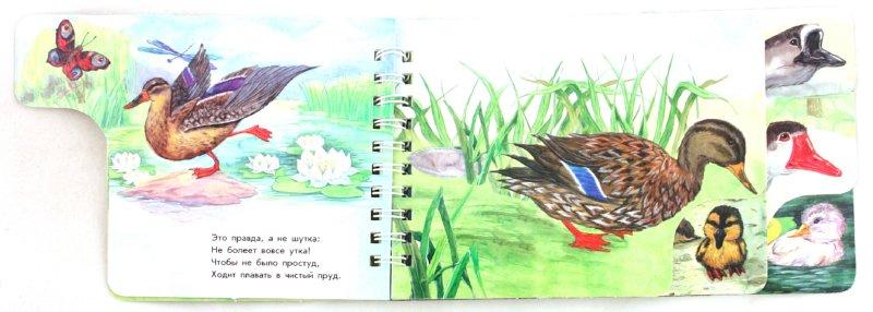 Иллюстрация 1 из 11 для На птичьем дворе - Юлия Каспарова | Лабиринт - книги. Источник: Лабиринт