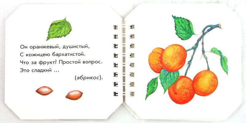 Иллюстрация 1 из 19 для Что в саду растёт - А. Геращенко | Лабиринт - книги. Источник: Лабиринт