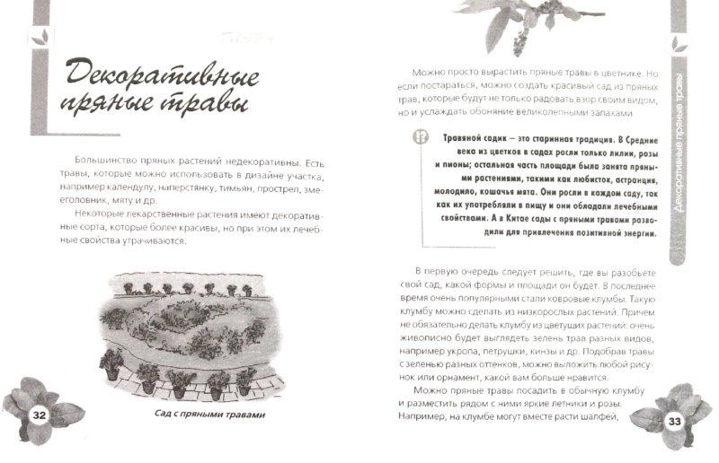 Иллюстрация 1 из 7 для Пряные травы на даче - Игорь Демин | Лабиринт - книги. Источник: Лабиринт