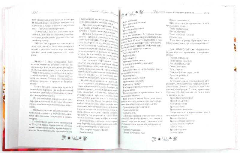Иллюстрация 1 из 10 для Природные лекарства. Современная энциклопедия - Генрих Ужегов | Лабиринт - книги. Источник: Лабиринт