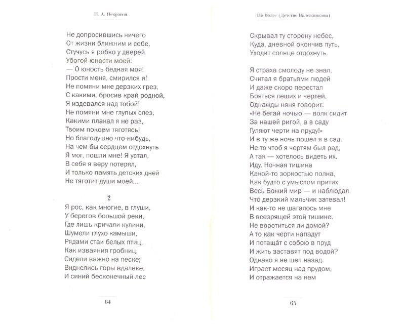 Иллюстрация 1 из 4 для Стихотворения и поэмы - Николай Некрасов | Лабиринт - книги. Источник: Лабиринт
