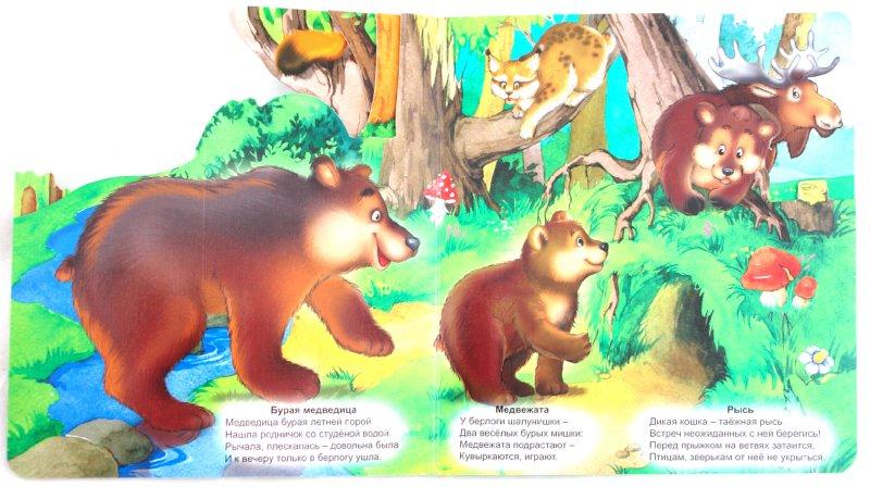 Иллюстрация 1 из 7 для Лесные жители - Наталья Майер   Лабиринт - книги. Источник: Лабиринт