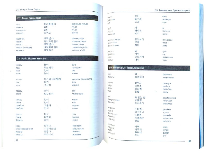 скачать книгу русско корейский словарь бесплатно