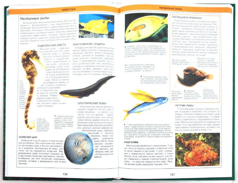 Иллюстрация 1 из 4 для Живая планета. Большая книга знаний | Лабиринт - книги. Источник: Лабиринт
