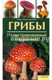 Грибы. Иллюстрированный справочник