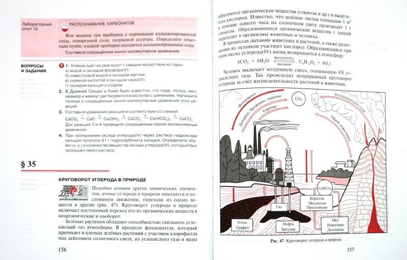 Иллюстрация 1 из 11 для Химия: Учебник для 9 класса общеобразовательных учреждений - Новошинский, Новошинская | Лабиринт - книги. Источник: Лабиринт