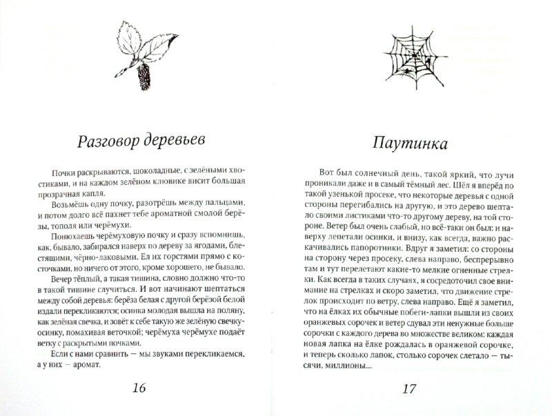 Иллюстрация 1 из 3 для Лисичкин хлеб - Михаил Пришвин | Лабиринт - книги. Источник: Лабиринт