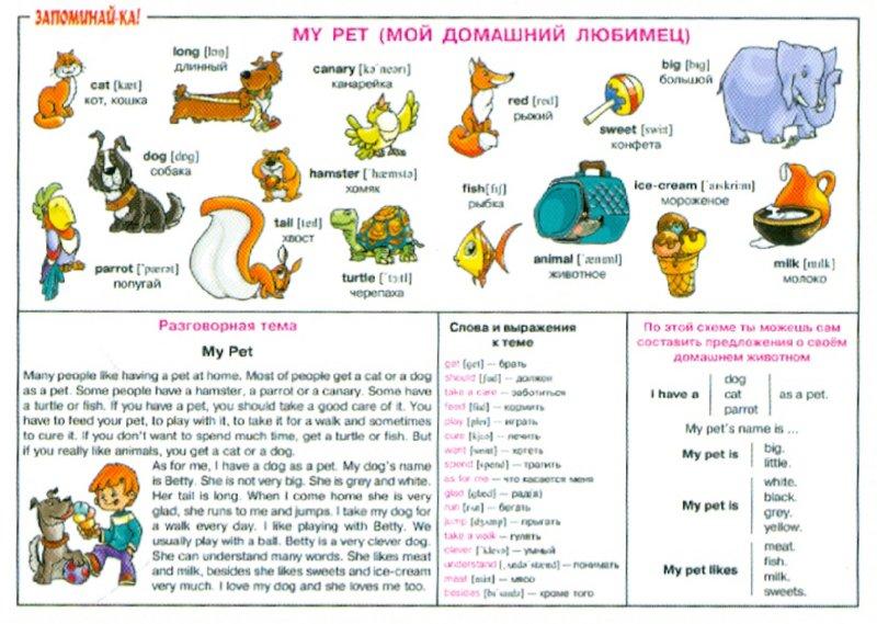 Иллюстрация 1 из 13 для Английский. Мой домашний любимец. Для учащихся 2-5 классов. Плакат | Лабиринт - книги. Источник: Лабиринт