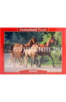 """Puzzle-2000. """"Лошади"""" (C-200313-NEW)"""