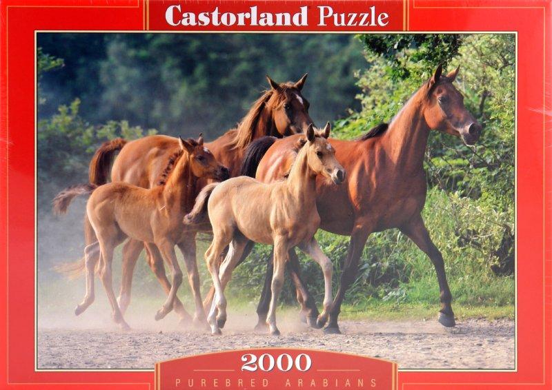 """����������� 1 �� 5 ��� Puzzle-2000. """"������"""" (C-200313-NEW)   �������� - �������. ��������: ��������"""