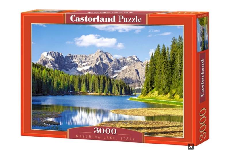 """����������� 1 �� 4 ��� Puzzle-3000 """"�����, ������"""" (C-300198-�)   �������� - �������. ��������: ��������"""
