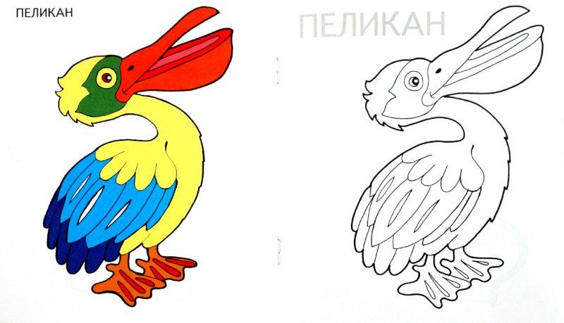 Иллюстрация 1 из 13 для Малышам и Малышкам. Раскраска Коровка | Лабиринт - книги. Источник: Лабиринт