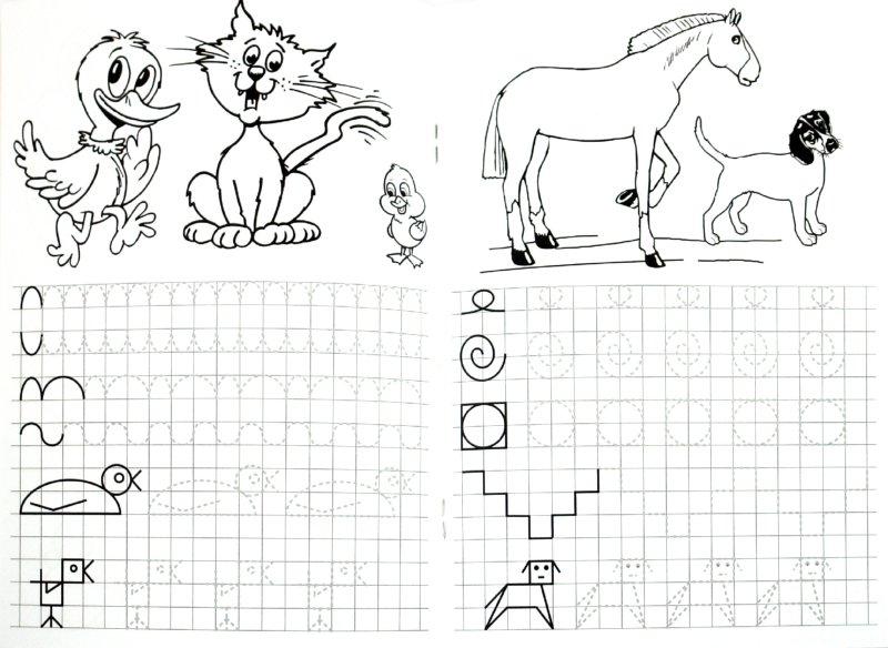 Иллюстрация 1 из 7 для Прописи. Начинаем писать по клеточкам - М. Гавриленко | Лабиринт - книги. Источник: Лабиринт