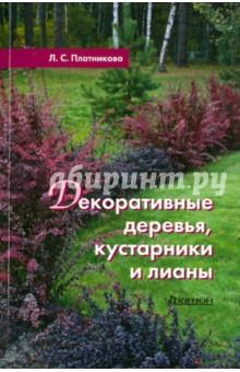 Декоративные деревья кустарники и