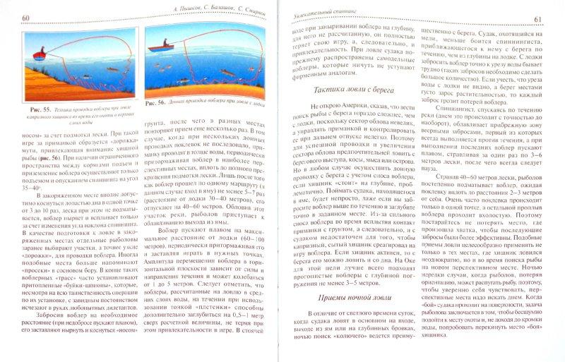 Иллюстрация 1 из 6 для Увлекательный спиннинг (для души и вкусного стола) - Пышков, Балашов, Смирнов | Лабиринт - книги. Источник: Лабиринт