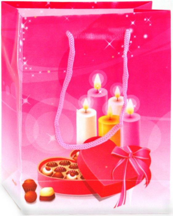 Иллюстрация 1 из 2 для Пакет подарочный пластиковый 17х12х5,5 (LY070711-6)   Лабиринт - сувениры. Источник: Лабиринт