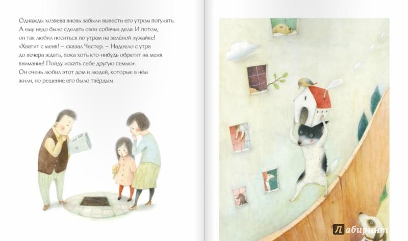 Иллюстрация 1 из 49 для Приключения Честера - Айяно Имаи | Лабиринт - книги. Источник: Лабиринт