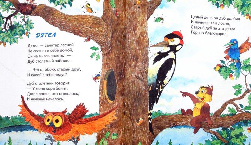Иллюстрация 1 из 8 для Ребятам о зверятах. Сказочный лес - М. Метелев | Лабиринт - книги. Источник: Лабиринт
